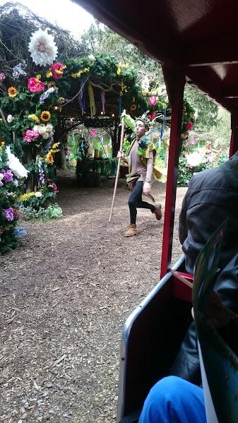fairy24